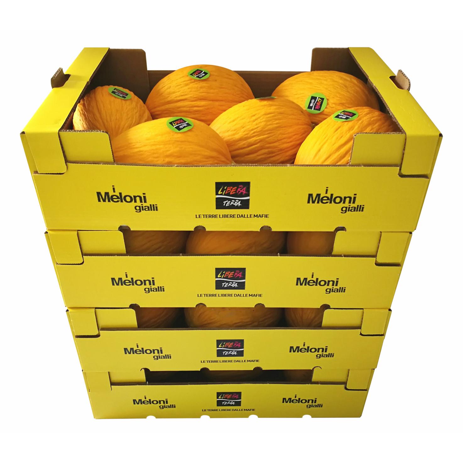 Meloni Gialli Biologici – Grandi Quantità (≥ 360 Kg)