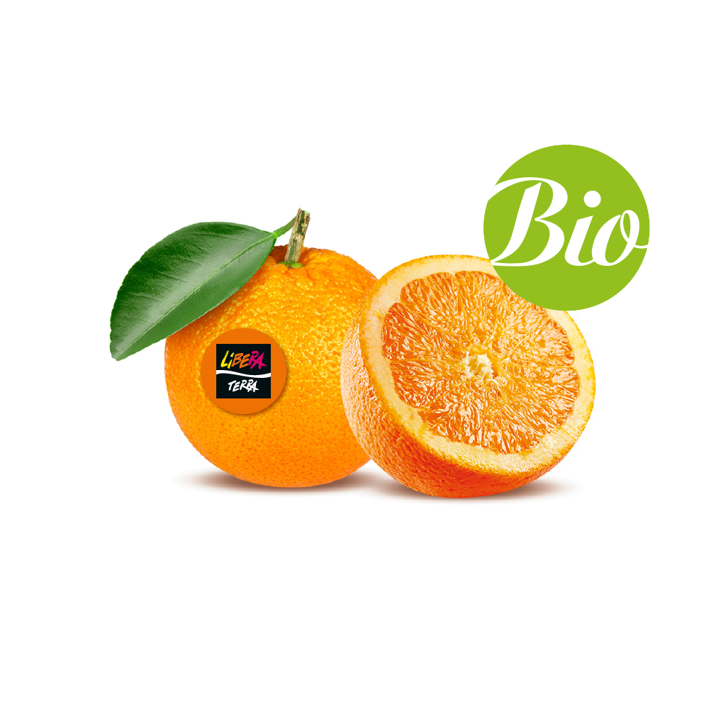 Arance Amare Biologiche (Box da 10 Kg)